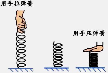 初二物理下册学案:7-2 知识点1 弹力