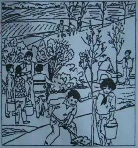 「通用版」小学生看图写话