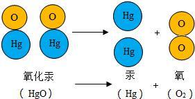 初中化学分子和原子考点揭秘