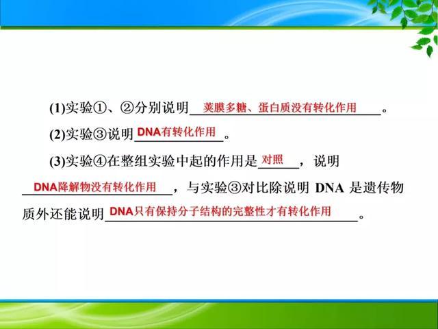 期末复习 | 遗传的分子基础——DNA是主要的遗传物质